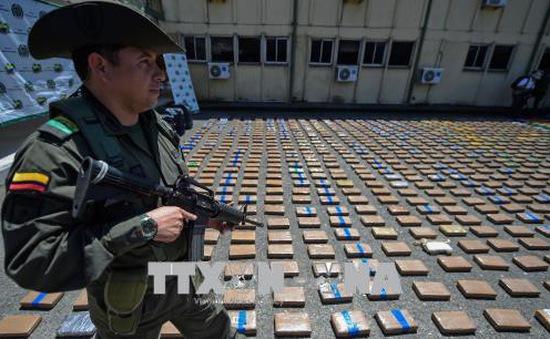 Colombia tịch thu 3,5 tấn cần sa