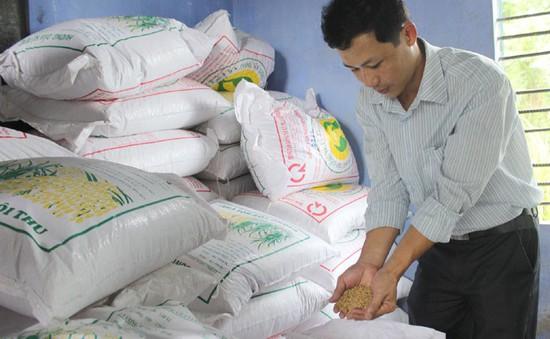 Phú Yên cam kết điều kiện tốt nhất cho doanh nghiệp, nhà đầu tư