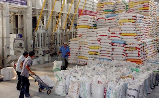 Thay đổi tập quán sản xuất gạo theo phân khúc thị trường xuất khẩu