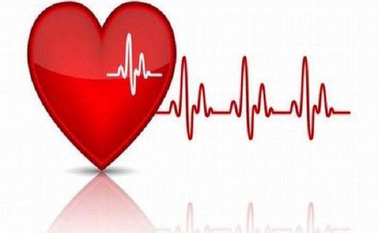 Khám sàng lọc bệnh lý tim mạch miễn phí cho người lớn và trẻ em tại Phú Thọ