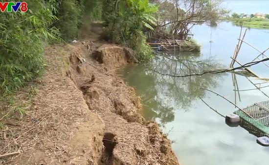 Thừa Thiên Huế: Sông Bồ bị sạt lở nghiêm trọng