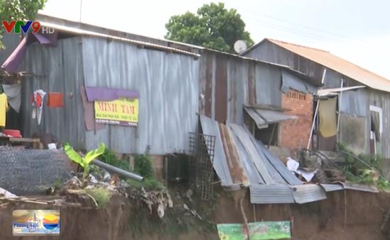 Người dân liều mình sống trong vùng sạt lở ở Đồng Tháp