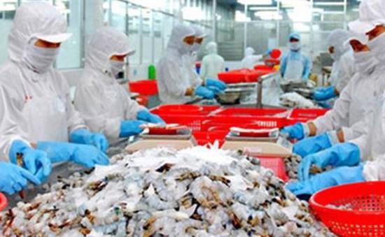 VASEP kiến nghị siết chặt tạm nhập tái xuất tôm từ Ấn Độ và Ecuador