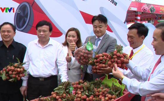 Sôi động Tuần lễ vải thiều Lục Ngạn (Bắc Giang) tại Hà Nội năm 2018