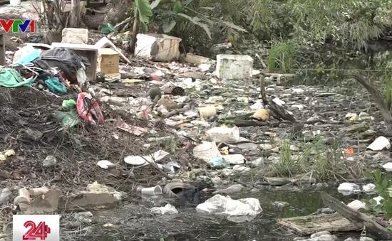 Hàng nghìn hộ nuôi cá và trồng lúa ở TP.HCM bị bủa vây bởi ô nhiễm