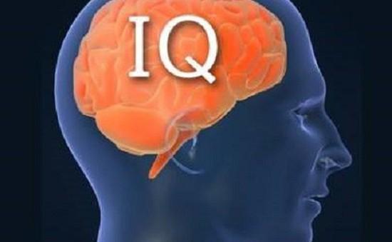 Trí thông minh của con người ngày càng giảm
