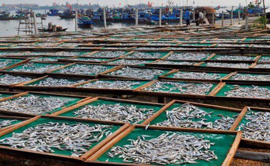 """Nghề """"cá nục hấp"""" tại làng chài Bình Minh"""