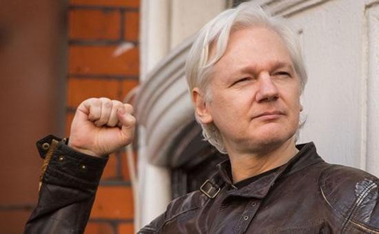 Ecuador có thể bỏ quy chế tị nạn đối với nhà sáng lập WikiLeaks