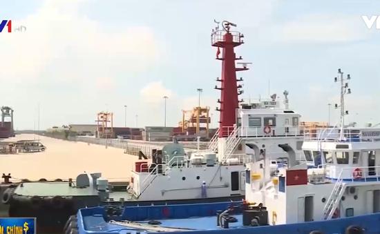 Cụm cảng Cái Mép tăng chuyến hàng hóa trực tiếp qua Mỹ và châu Âu