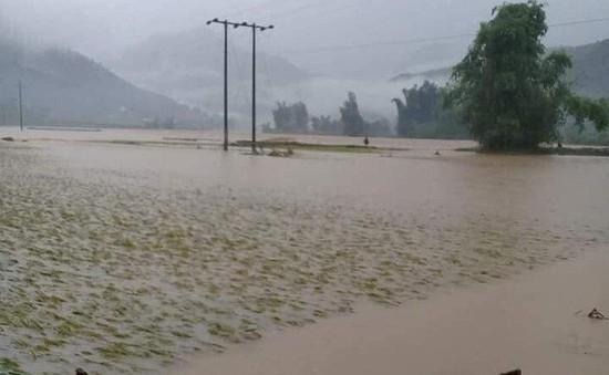 Lũ lớn trên suối Chăn (Lào Cai) gây thiệt hại lớn về tài sản và hoa màu