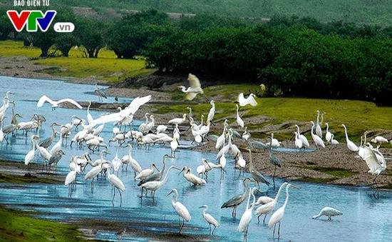 Kinh nghiệm phát triển du lịch gắn với bảo tồn đa dạng sinh học