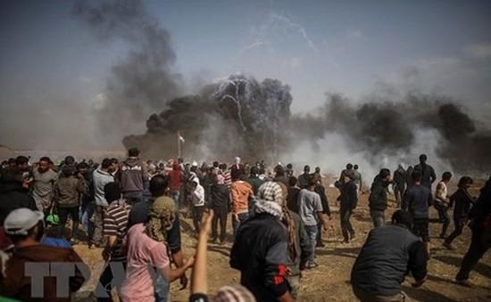 Israel bắn chết 2 người biểu tình Palestine