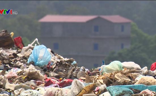 Túi nilon và hiểm họa môi trường