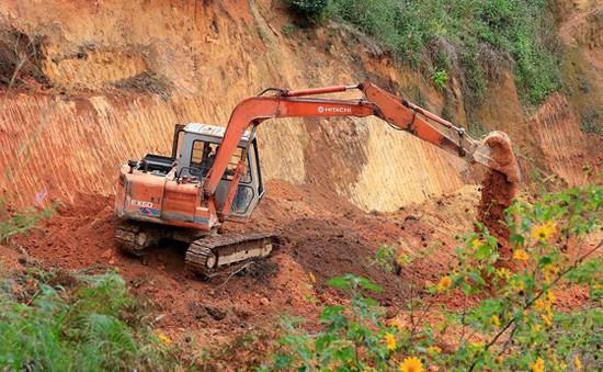 Lâm Đồng: Đề nghị xử lý hai doanh nghiệp tự ý san ủi 3,58 ha đất rừng