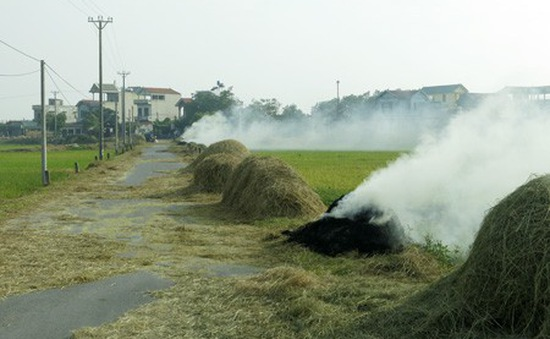Xử lý nghiêm hành vi phơi nông sản, rơm rạ cản trở giao thông