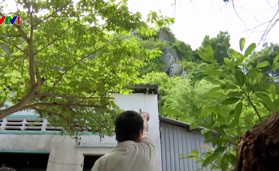 Kiên Giang: Người dân lo lắng vì nguy cơ sạt lở nủi