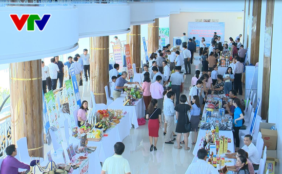 Hội nghị kết nối cung cầu hàng Việt Nam 2018
