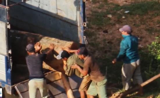 Lực lượng chức năng ở đâu trong những vụ phá rừng ở Hà Giang?