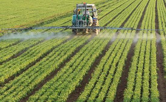 Nông dân Mỹ chật vật trước cuộc chiến thương mại