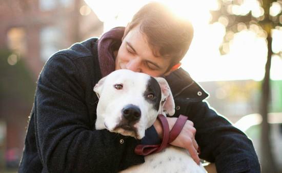 Sở hữu một chú chó sẽ tốt cho sức khỏe bạn như thế nào?