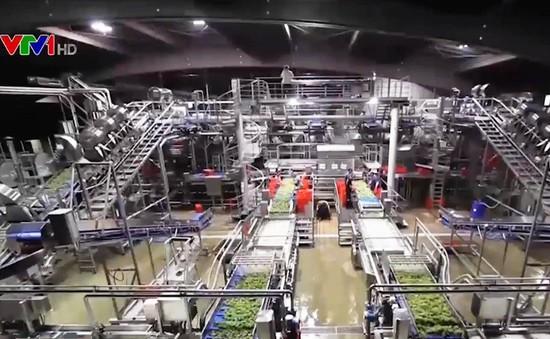 Kinh nghiệm quốc tế trong việc phát triển nông nghiệp thông minh bền vững
