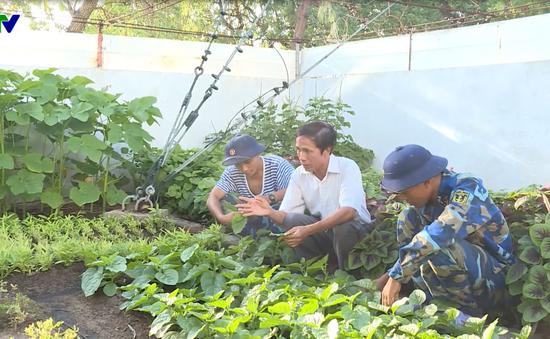 Tiến hành thử nghiệm hệ sinh thái hữu cơ ở Trường Sa