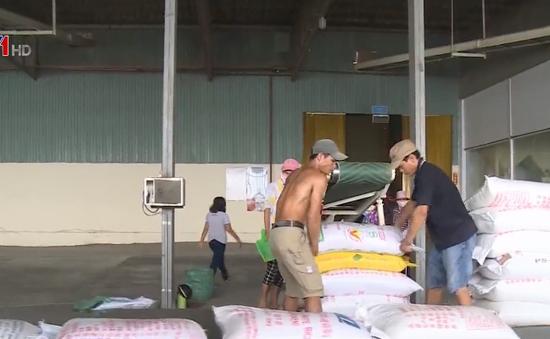 Việt Nam ký hợp đồng 1 tỷ USD xuất khẩu gạo sang Philippines