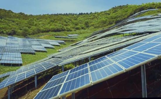 Khởi công dự án điện mặt trời Phước Hữu tại Ninh Thuận