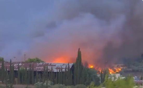Hy Lạp kêu gọi sự hỗ trợ từ quốc tế để đối phó cháy rừng