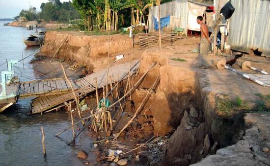 Khẩn cấp ứng phó sạt lở bờ biển Tiền Giang