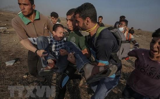 Ai Cập nỗ lực ngăn chặn leo thang quân sự tại dải Gaza