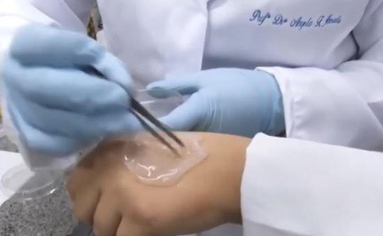 Vết thương mau lành nhờ băng dán làm từ dứa
