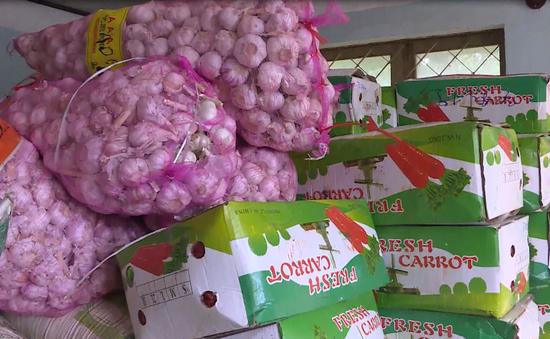 Lâm Đồng tịch thu hơn 4 tấn cà rốt và tỏi nhập lậu