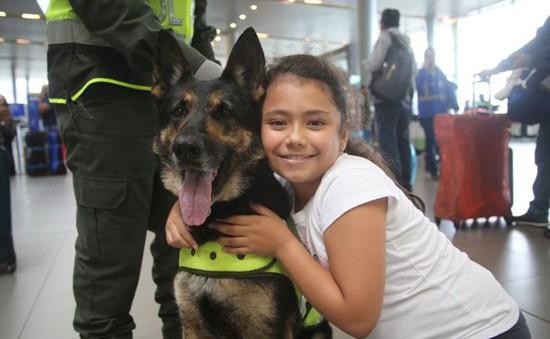 Colombia: Tội phạm treo giải 70.000 USD truy sát chó cảnh sát