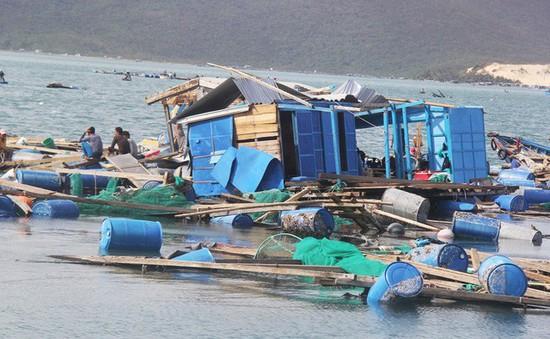 Khánh Hòa: Hủy hỗ trợ thiệt hại thủy sản sau bão số 12 đối với 175 trường hợp