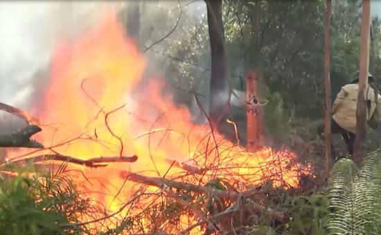 Cháy rừng liên tiếp tại Nghệ An và Hà Tĩnh