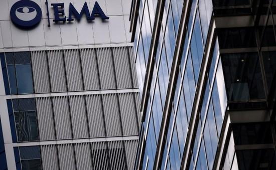 Châu Âu thu hồi thuốc cao huyết áp chứa tạp chất gây ung thư