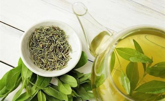 Tinh chất quý từ trà xanh hữu ích với bệnh nhân tiểu đường
