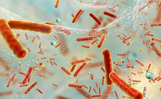 Cảnh báo gen kháng thuốc kháng sinh trong không khí