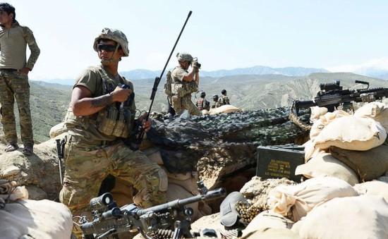 Giao tranh tại Afghanistan khiến gần 500 người thiệt mạng