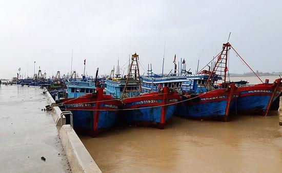 Nghệ An nỗ lực kêu gọi tàu thuyền tìm nơi tránh trú an toàn trước bão số 4