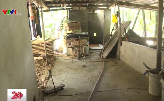 Nghệ An: Hàng chục gia đình mất ăn mất ngủ vì lo nhà bị sạt lở