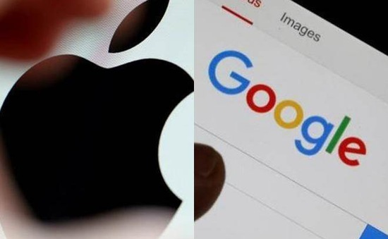 Không cần có bằng đại học khi xin việc tại Google và Apple