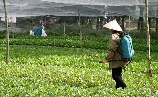 Phòng tránh nguy hại từ thuốc BVTV - Khoảng trống trong nông dân