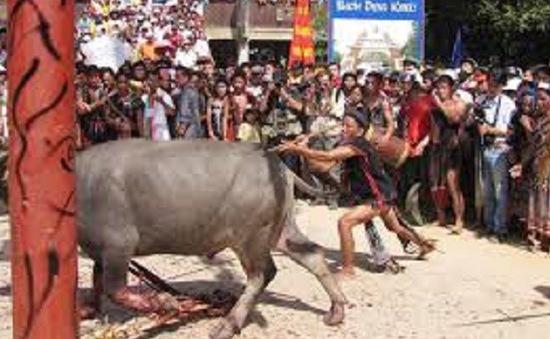 Thừa Thiên Huế: Trả lại số tiền người dân đã đóng góp cho Lễ hội đâm trâu