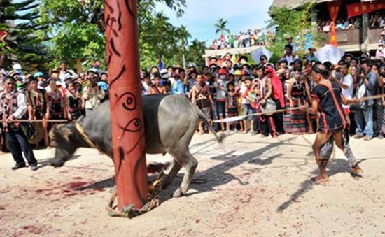 TT-Huế: Thu tiền để tổ chức lễ hội đâm trâu, người dân bức xúc