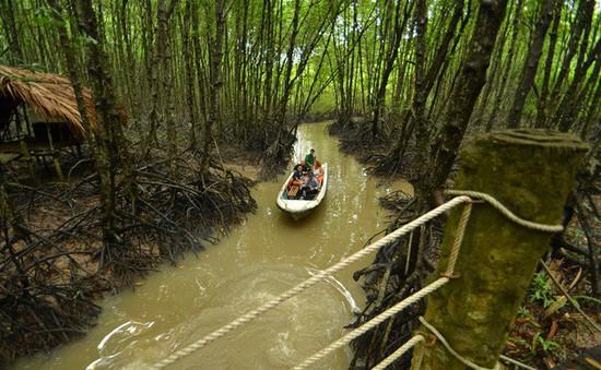 Hội thảo 40 năm khôi phục thành công rừng ngập mặn Cần Giờ