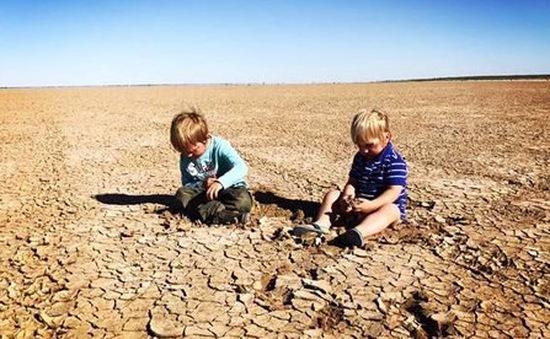 New South Wales tuyên bố tình trạng hạn hán toàn bang