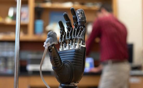 Phát triển da điện tử giúp người khuyết tật cảm nhận và phản xạ