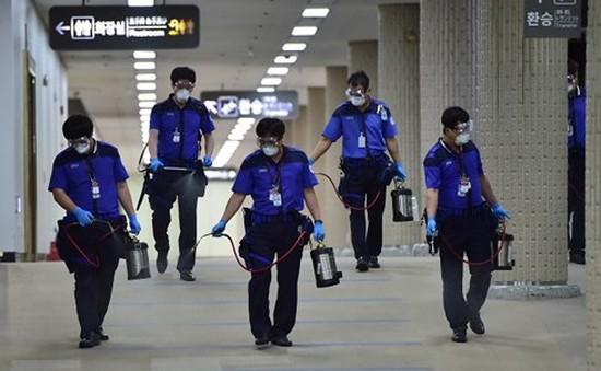 Hàn Quốc tăng cường ngăn chặn sự lây lan của virus MERS